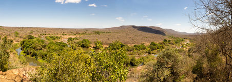 Panorama of Savanna Landscape with River in Swaziland Stock Image