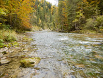 Panorama scene of river Ammer in gorge Royalty Free Stock Photo