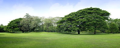 Panorama scenery of park Stock Photo