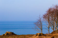 Panorama sea forest Royalty Free Stock Photography