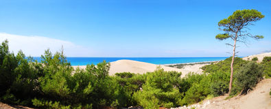 Panorama sea-view. With sand dune and lonely tree in Patara, Turquoise coast of Turkey near Kalkan and Fethiye royalty free stock photography