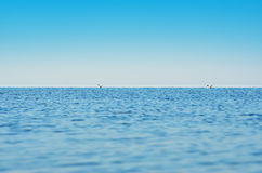 Panorama of sea waves against the blue sky Stock Photos