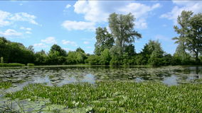Panorama section of the river against the sky. stock footage