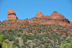 Panorama sedona Royalty Free Stock Image