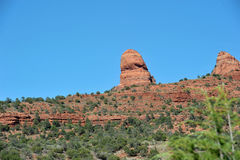 Panorama sedona Royalty Free Stock Photo