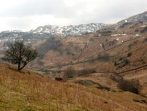 Panorama am See-Bezirk, Cumbria, England Großbritannien Lizenzfreies Stockfoto