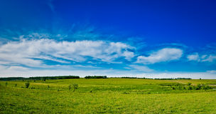 Panorama selvaggio della natura Fotografie Stock Libere da Diritti