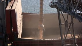 Close panorama of ship loading grain crops on bulk freighter via trunk to open cargo holds at silo terminal in seaport. Panorama of ship loading grain crops on stock footage