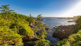 Panorama of shoreline at wild pacific trail in Ucluelet, Vancouv royalty free stock images