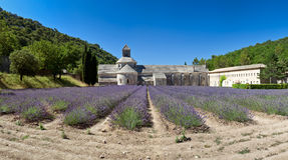 Panorama- sikt av Abbaye de Sénanque Arkivbild