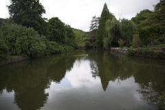 Panorama- sikt av Bolsena Fotografering för Bildbyråer