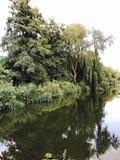 Panorama- sikt av Bolsena Royaltyfri Foto