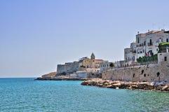 Panorama- sikt av Vieste. Puglia. Italien. Arkivfoton
