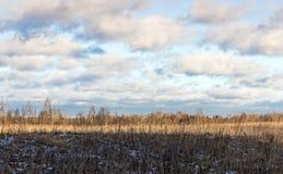 panorama- sikt för fältliggande Arkivfoton