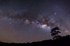 Panorama silhouette of Tree with cloud and Milky Way Stock Photography