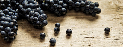 Panorama size, lots of blue grapes on wooden table Stock Photos
