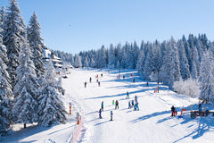 Panorama of ski resort Kopaonik, Serbia, people skiing, houses covered with snow Stock Images