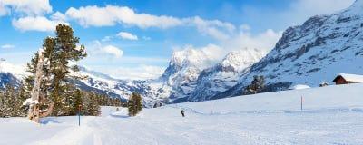 Panorama- Ski Slope i Grindelwald Fotografering för Bildbyråer