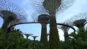 Panorama of Sky bridge walkway at Supertrees Stock Photo