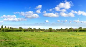 Panorama of sky clouds and grass on meadow