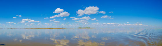 The Panorama of skyline in wetland  Stock Image