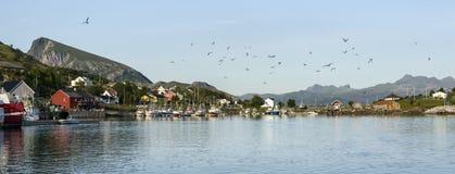 Panorama of small fishing port, Norway Stock Photo