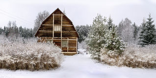 Panorama of a small house in a wood. Panorama of a small house in a winter wood Royalty Free Stock Photography