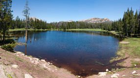 Panorama of small lake in Utah above park city Royalty Free Stock Photo