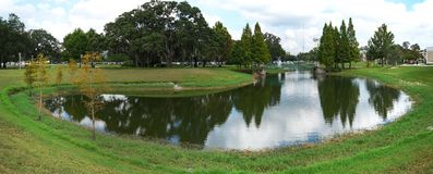 The panorama of a small pond (lake) in the University of South Florida Stock Images