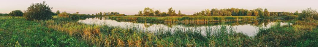 Panorama of a small river against the forest. Summer landscape royalty free stock photo
