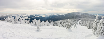 Panorama on the Snieznik Mountain slope Stock Photography