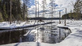 Panorama of snow-covered landscape of winter forest and the rive Royalty Free Stock Image