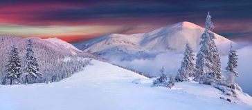 Panorama of snow covered peaks Royalty Free Stock Photo