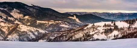 Panorama snowy forested hills in winter. Beautiful landscape with mountain ridge with snowy peaks in the distance Stock Photography