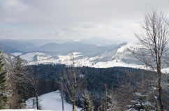 Panorama of snowy mountains and forest in a ski resort. Weather in the mountains. Stock Images