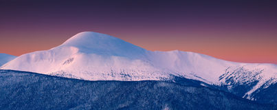 Panorama of snowy summit at winter morning Royalty Free Stock Image