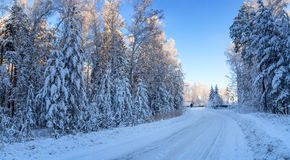 Panorama of snowy woods, with the road leading to the house, Russia, the Urals Stock Images