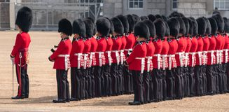 Panorama of soldiers in traditional uniform in London during Trooping of the Colour parade stand to attention. stock photo