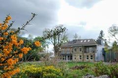 Panorama som tas på en molnig vårdag av Pinner Memorial Park, UK, västra hus och Heath Robinson Museum i bakgrunden arkivfoto
