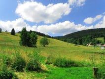 Panorama- sommarlandskap Arkivbild