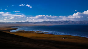 Panorama of Song Kul lake at the sunset Kyrgyzstan. Panorama of Song Kul lake at the sunset, Kyrgyzstan royalty free stock photos