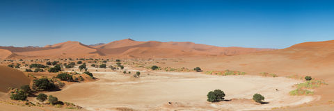 Panorama of the Sossusvlei desert pan Royalty Free Stock Photos