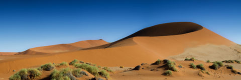 Panorama of the Sossusvlei Dune Field Royalty Free Stock Images