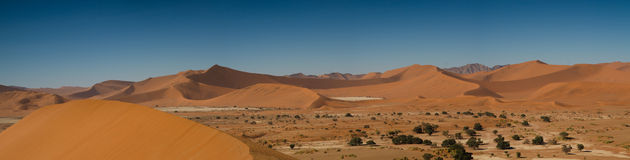 Panorama of the Sossusvlei Dunes Stock Images