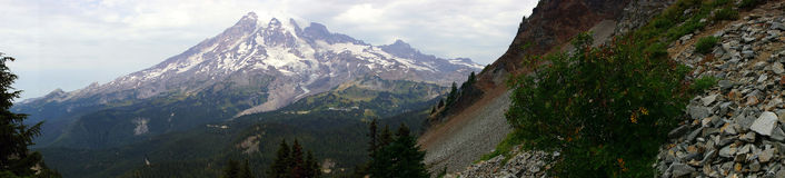 Panorama, south slopes of Mt. Rainier Stock Photography