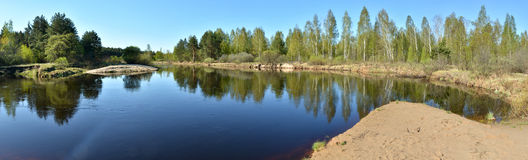 Panorama spring forest river. Royalty Free Stock Photo