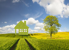 Panorama spring green field,the concept of green, ecological house built of leaves stock photos