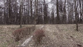 Panorama spring park. This video is about panorama spring park stock footage