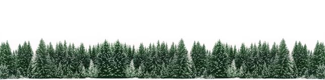 Winter panorama of spruce tree forest covered by fresh snow during Winter Christmas time banner wide panorama background