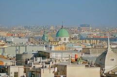 Panorama of St. Petersburg from bird's-eye view Royalty Free Stock Photo